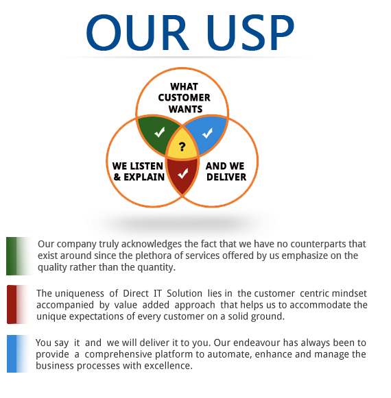 DIERCT IT SOLUTION USP WHY WE UNIQUE